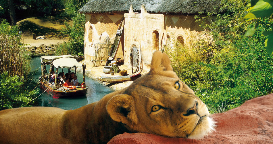 Image result for zoo hannover