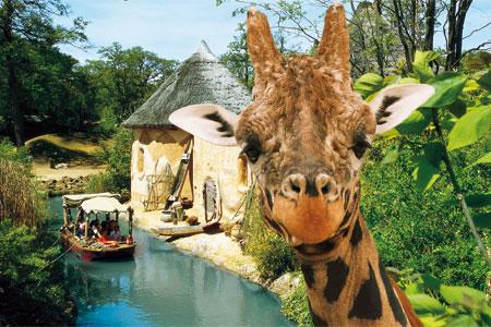 jetzt newsletter abonnieren erlebnis zoo hannover. Black Bedroom Furniture Sets. Home Design Ideas