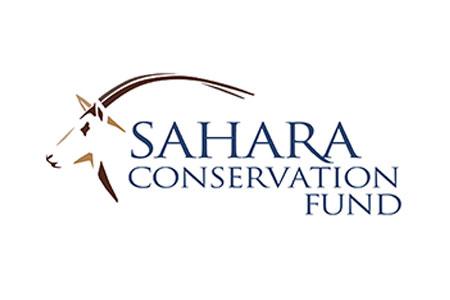 Sahara Hannover